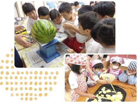 野菜のお世話・収穫イメージ